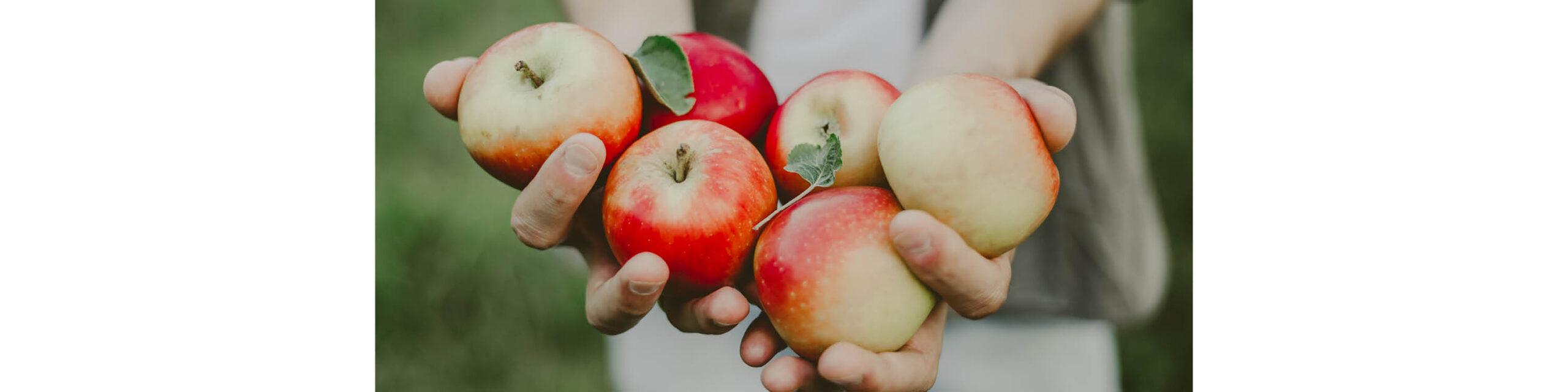 Äppelhelg